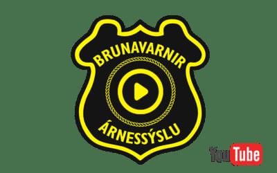 Brunaslönguhjól